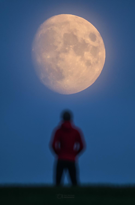 Moon and Lockdown
